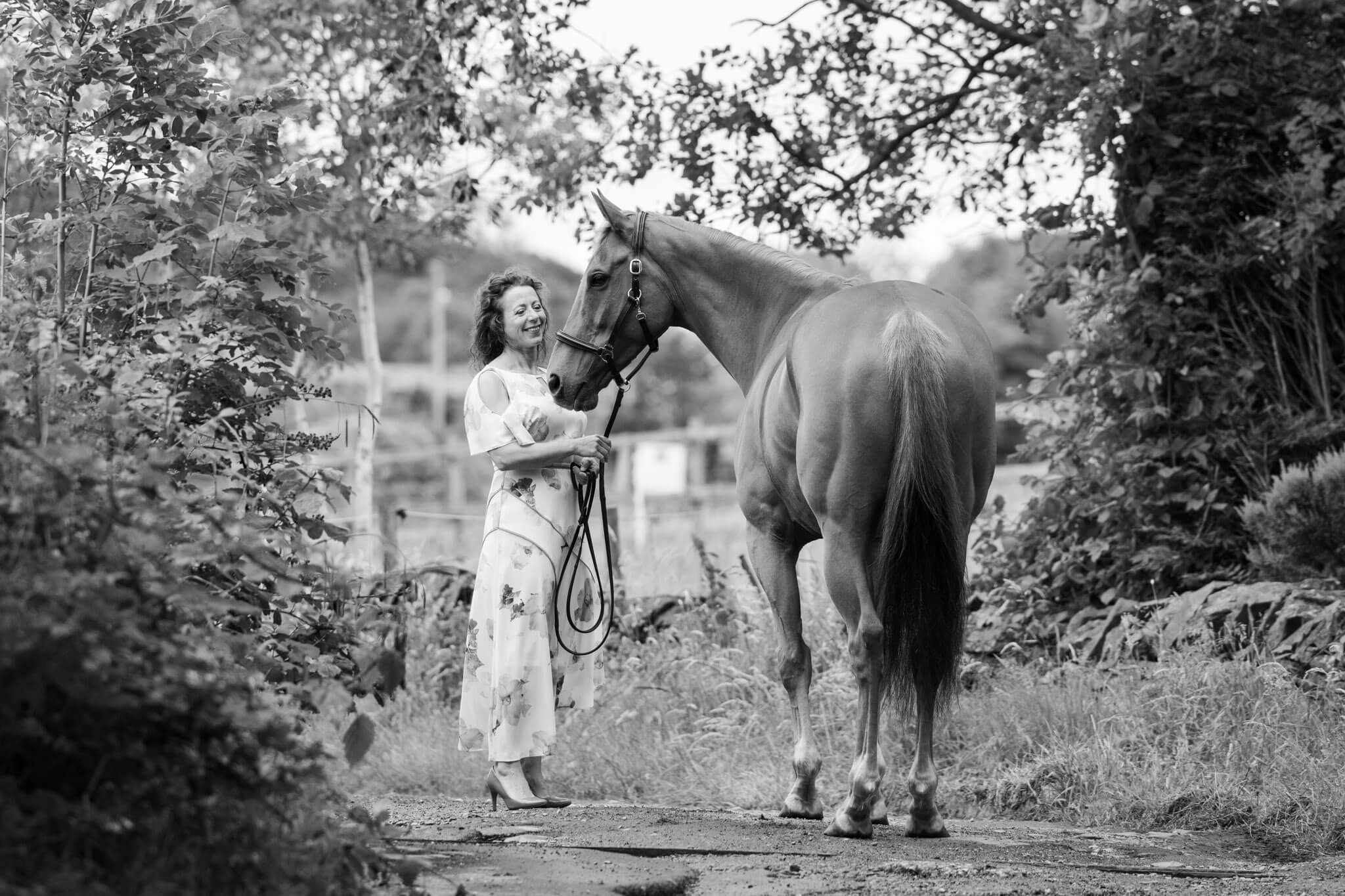 Equine-Photoshoot-Tips