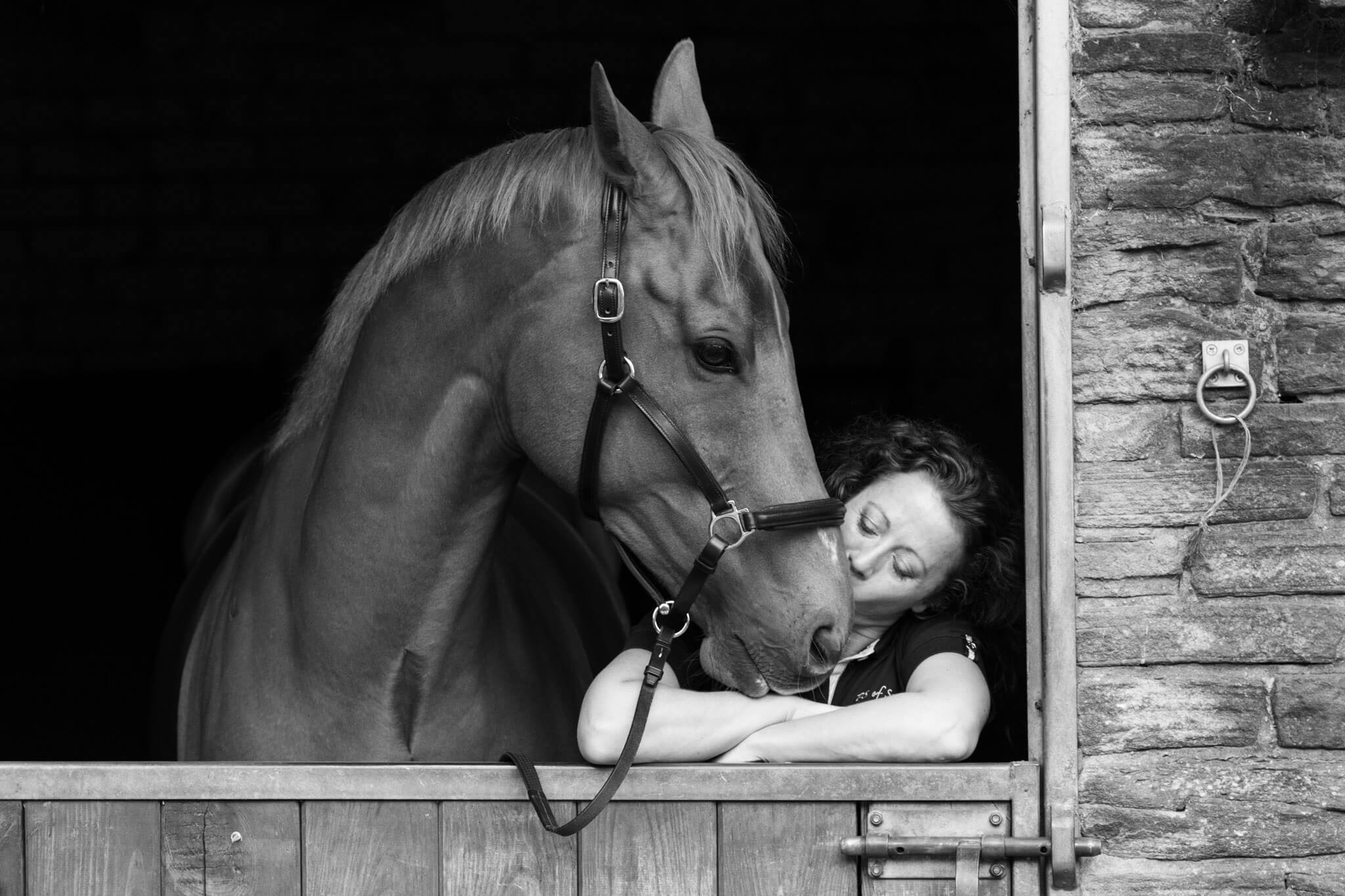 Horse-Kisses
