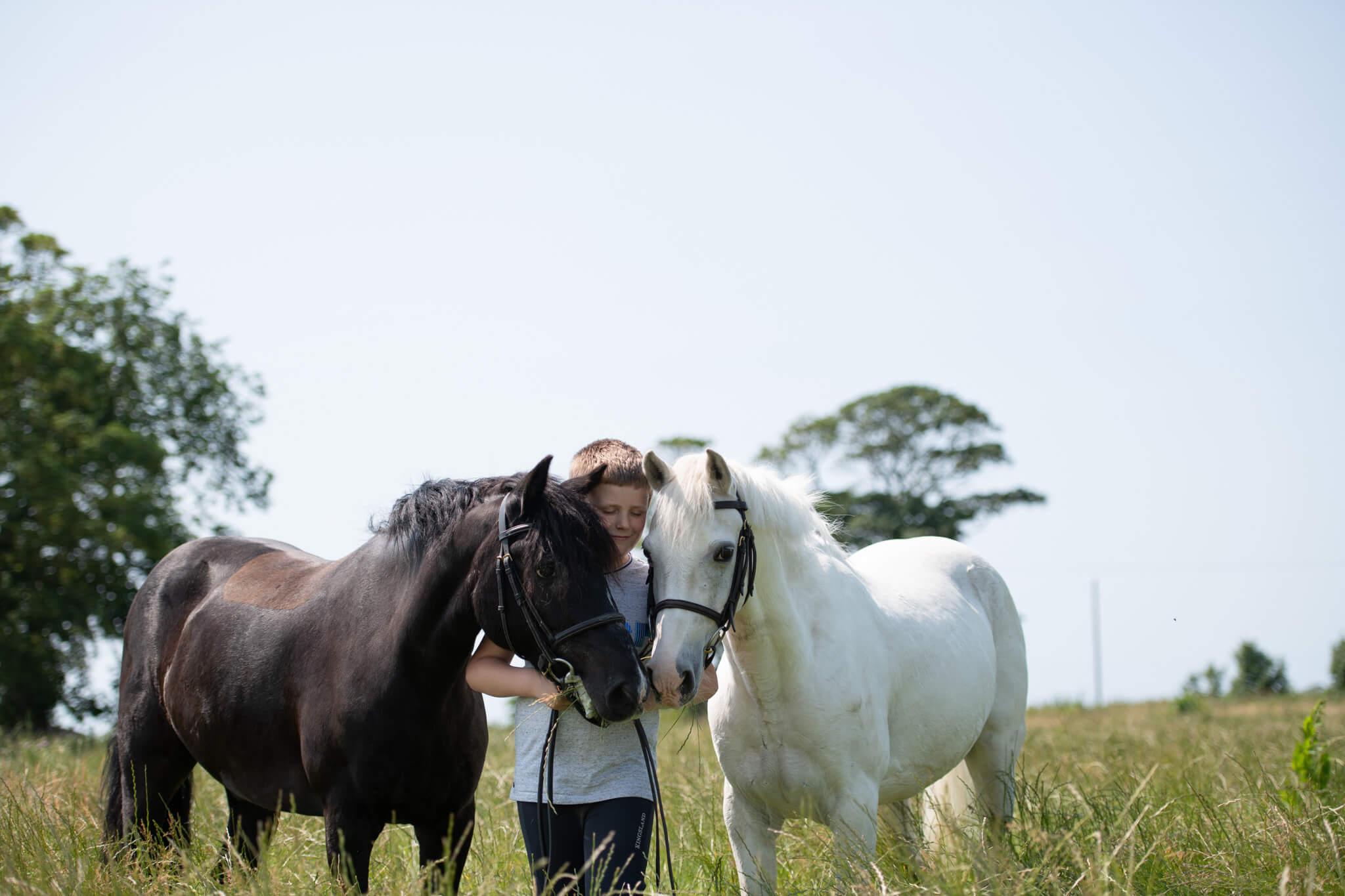 Ponies-and-Boy-Cuddle