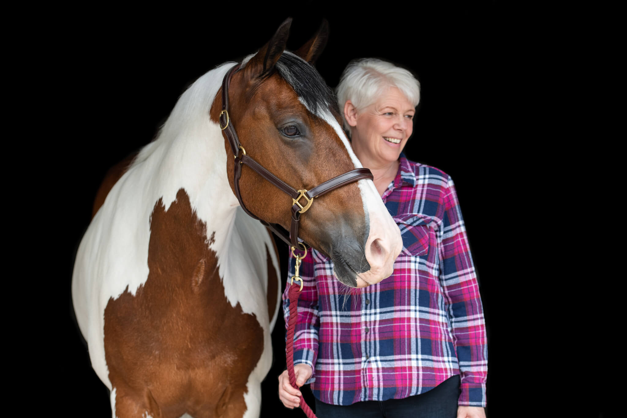 Shetland-Pony-Flowers
